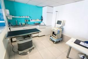 Consultations médicales vétérinaire